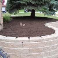 landscaping29